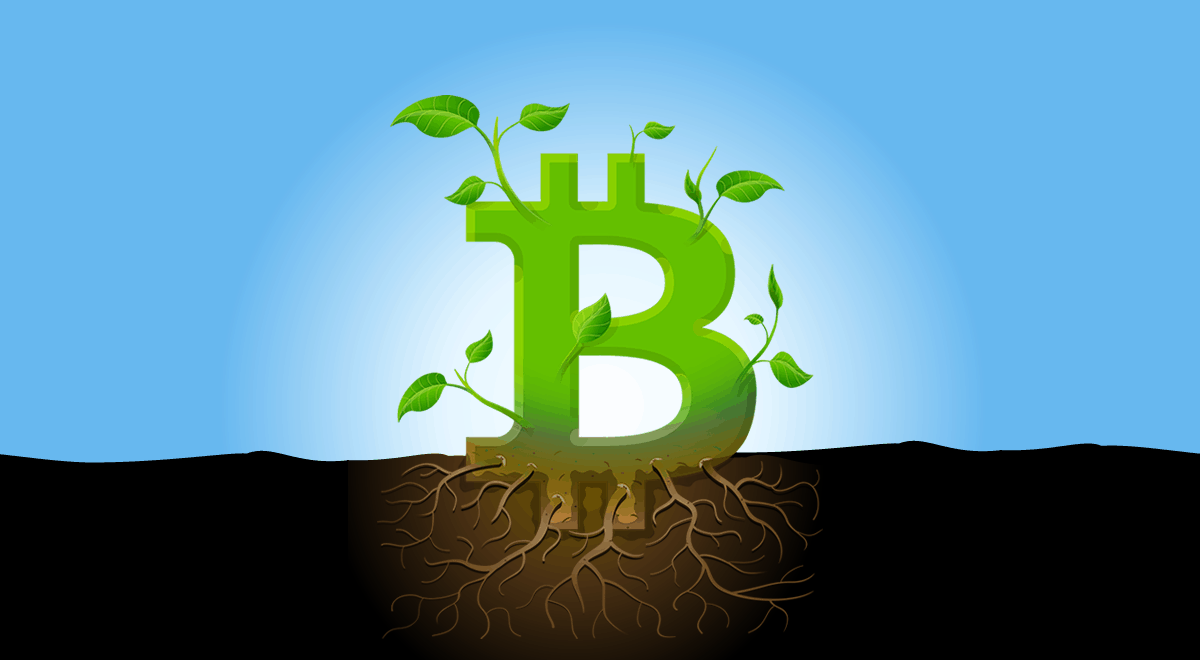 Is Bitcoin dead or just experiencing growing pains?